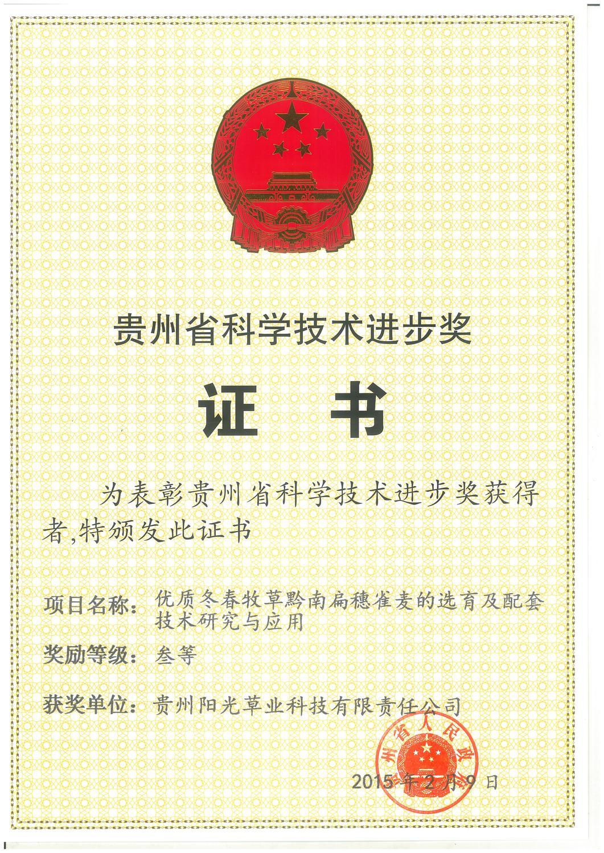三等奖证书-阳光公司.jpg